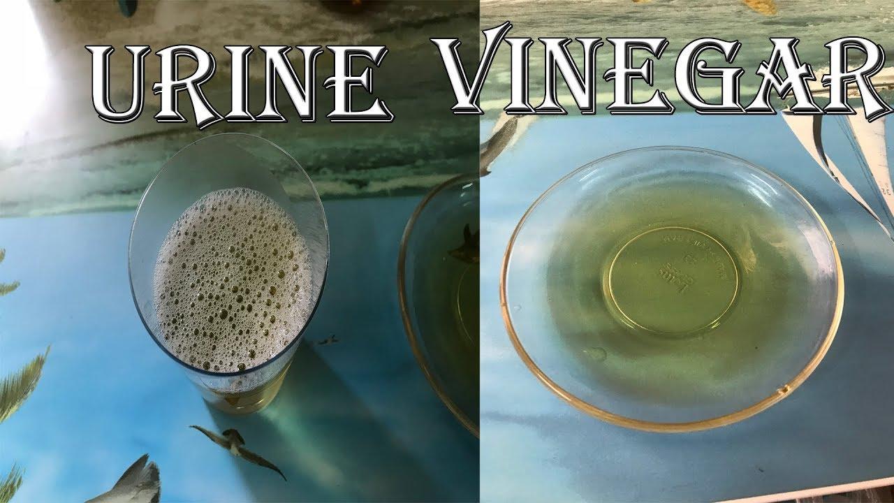 homemade pregnancy test with apple cider vinegar
